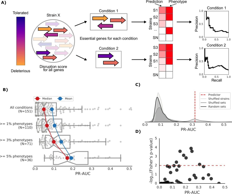 Phenotype inference in an Escherichia coli strain panel | eLife