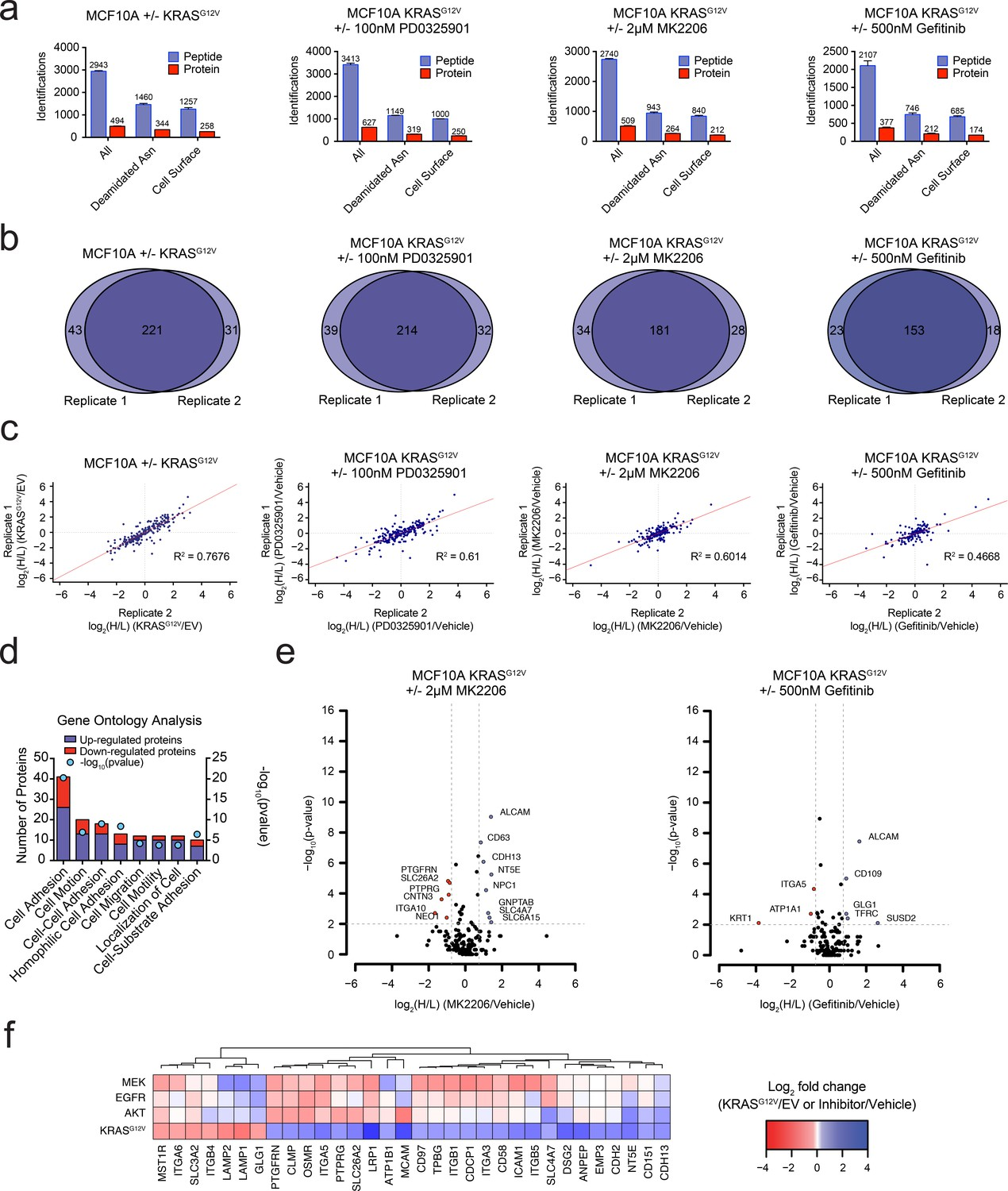 Targeting Ras Driven Human Cancer Cells With Antibodies To Simple Circuit Diagram For Detecting Loss Of 4 20 Ma Signal Oncogenic Kras Signaling Coordinately Regulates The Expression Cell Surface Proteins In A Model Epithelial