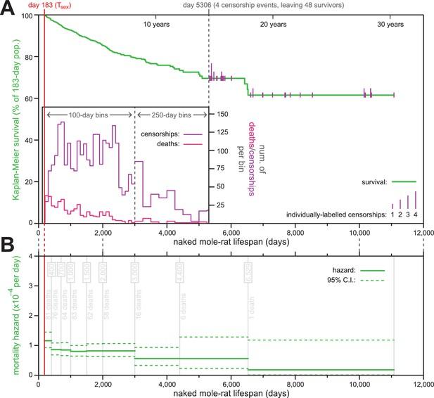 (PDF) Comment on Naked mole-rat mortality rates defy