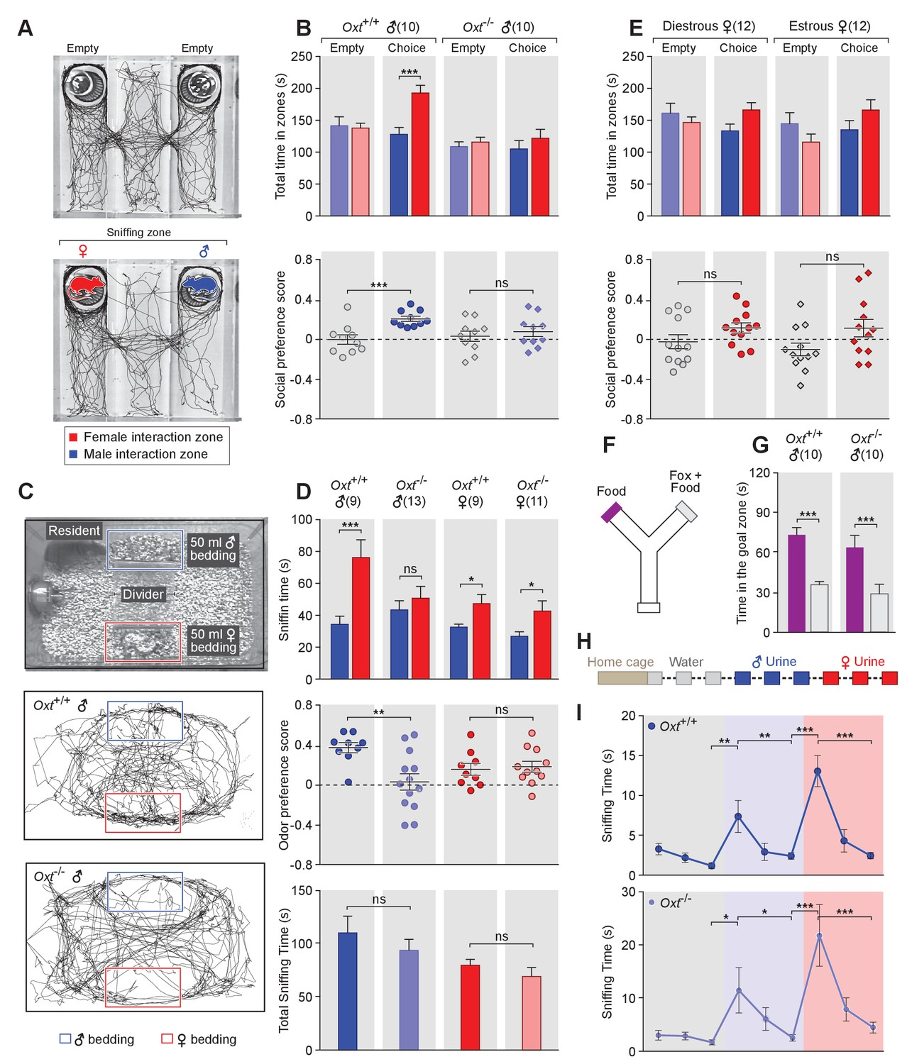 Oxytocin Signaling In The Medial Amygdala Is Required For Sex Tl 1000 R Wiring Diagram Oxt Male Mice To Discriminate Female And Conspecifics