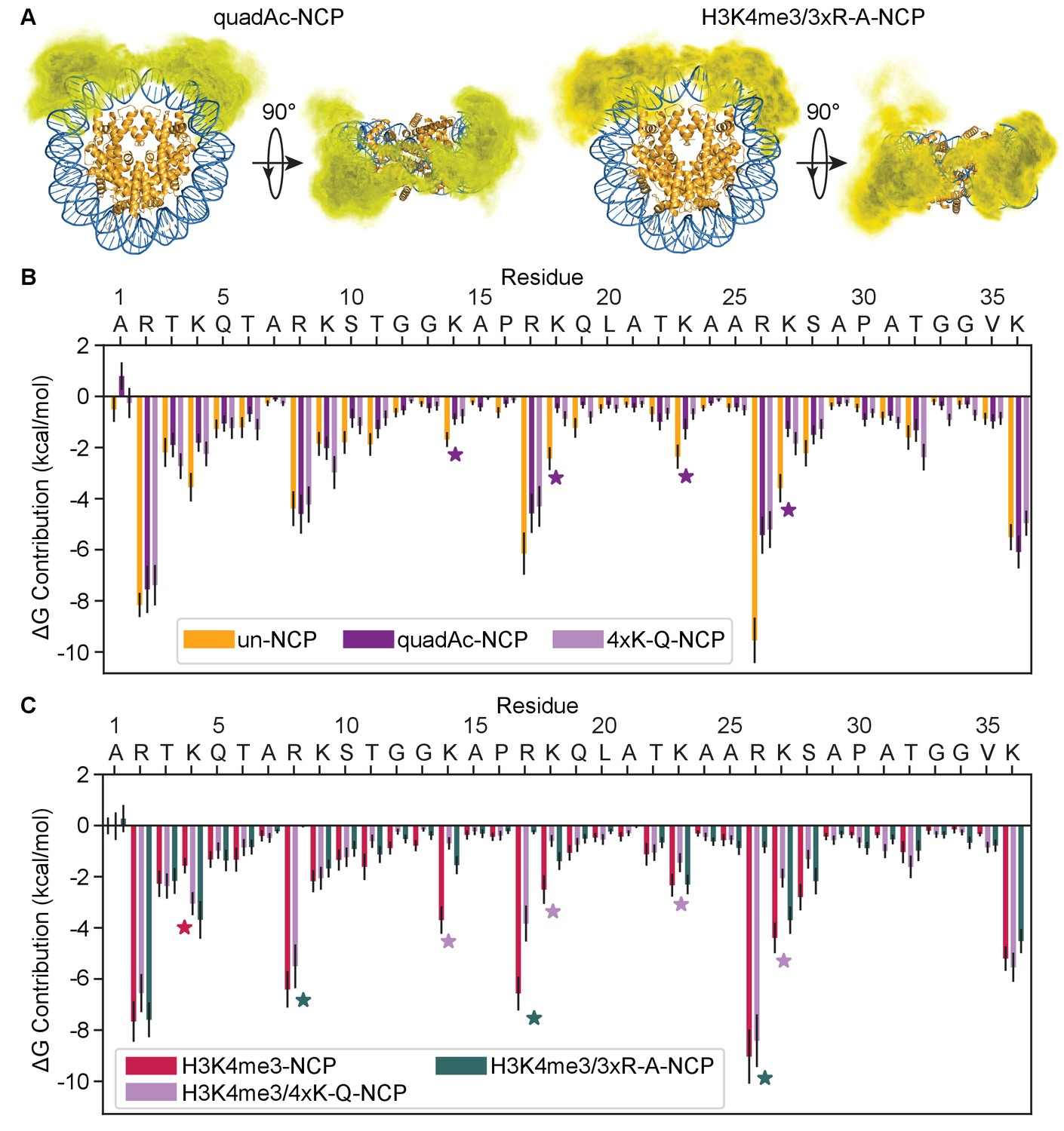The conformation of the histone H3 tail inhibits association