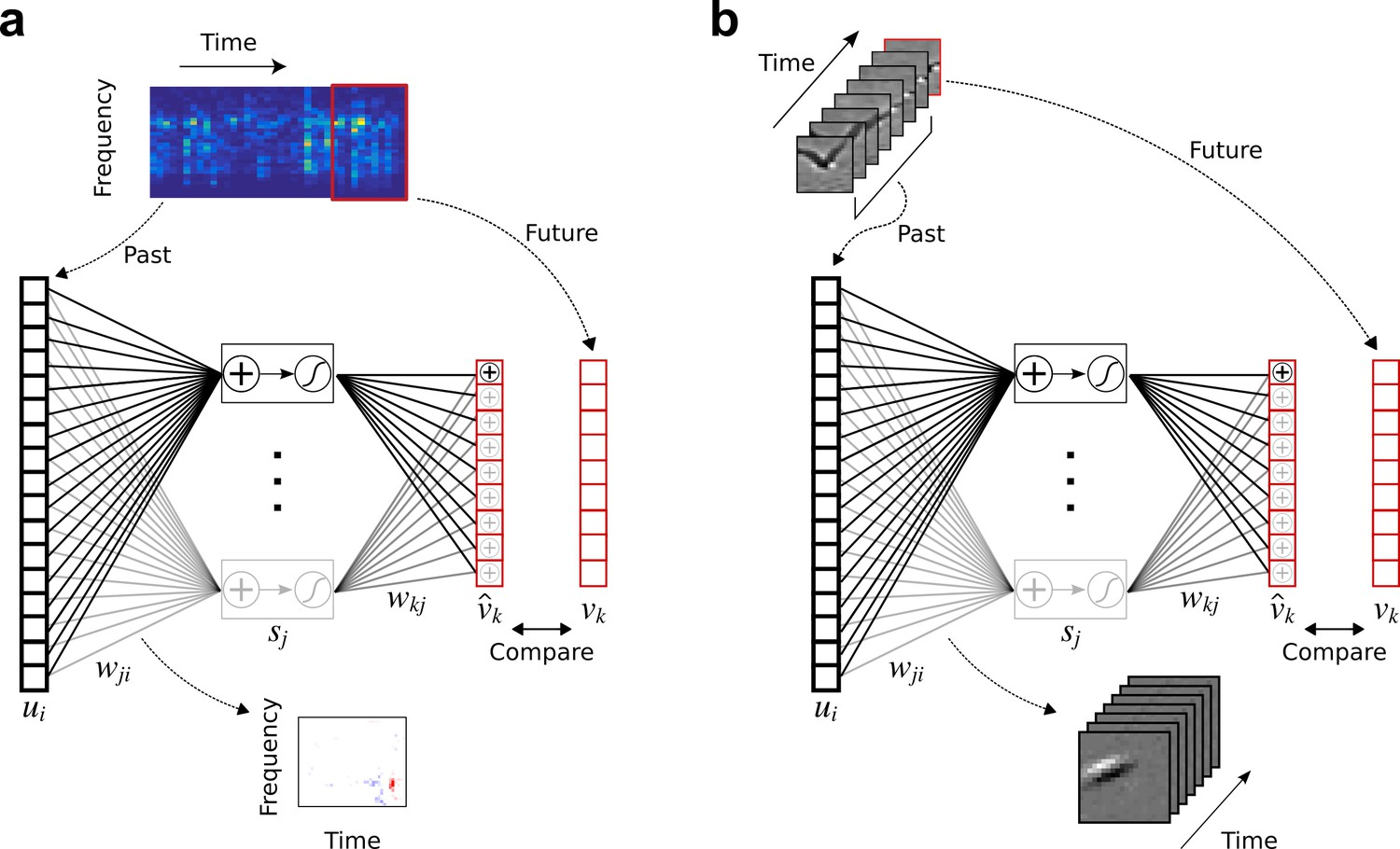 Sensory cortex is optimized for prediction of future input | eLife