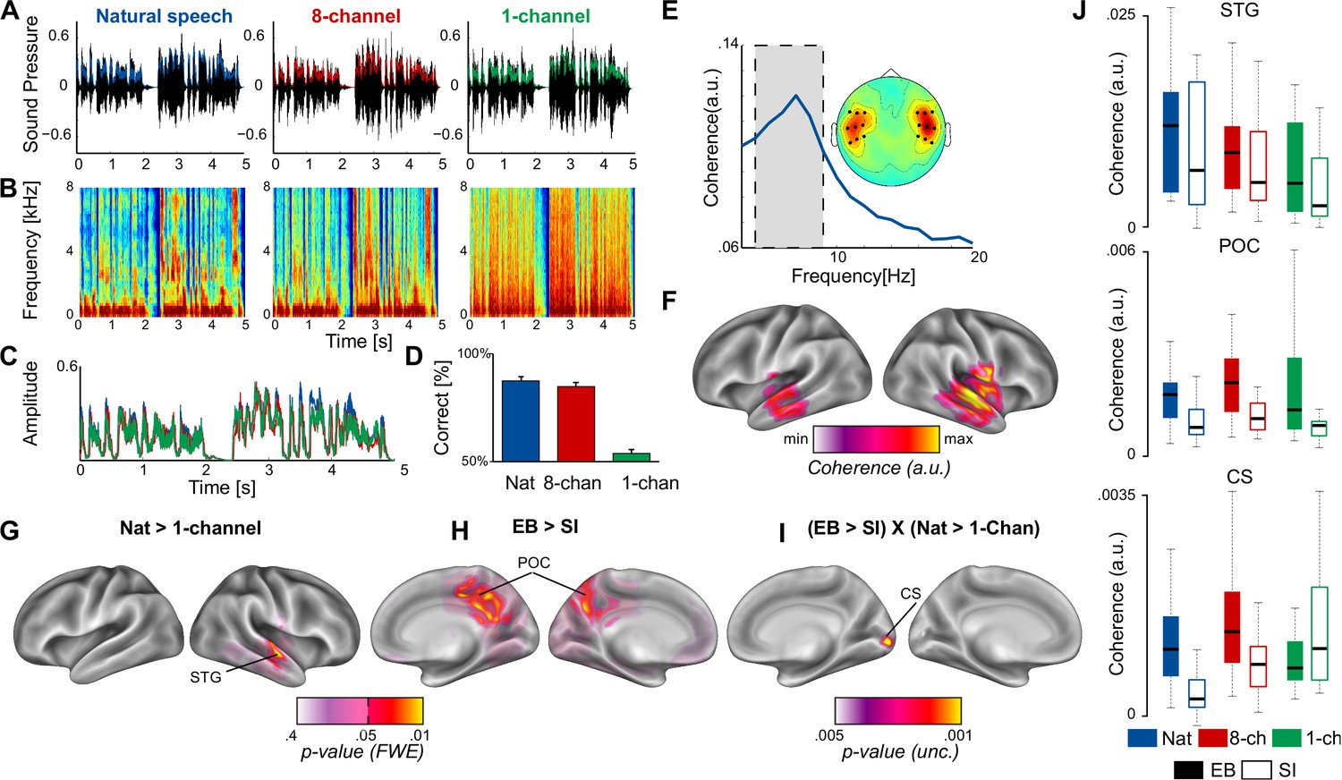Neuronal Populations In The Occipital Cortex Of Blind Atx Power Supply Restructuring Full Outage With Off Circuit Cerebro Acoustic Coherence Eb And Si