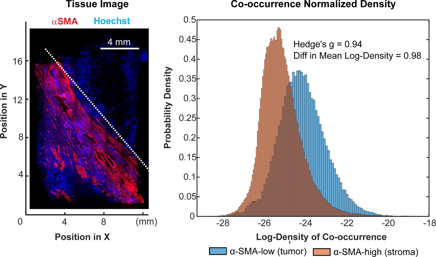 Highly Multiplexed Immunofluorescence Imaging Of Human Tissues And Pics Photos Circuit Training Workout 11 28 11a Spatial Analysis Pd 1 L1 Expressing Cells