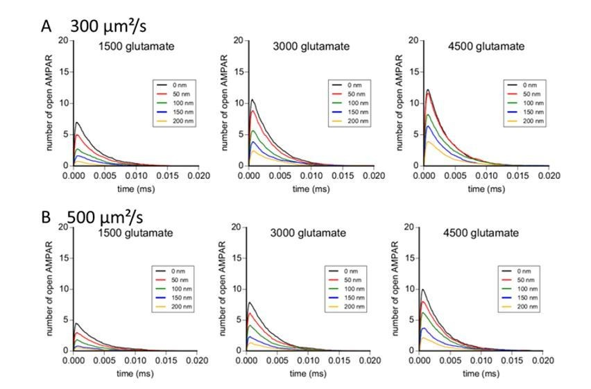 Pre-post synaptic alignment through neuroligin-1 tunes