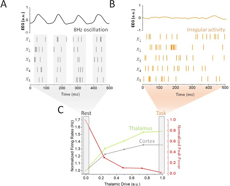 Stochastic resonance mediates the state-dependent effect of periodic