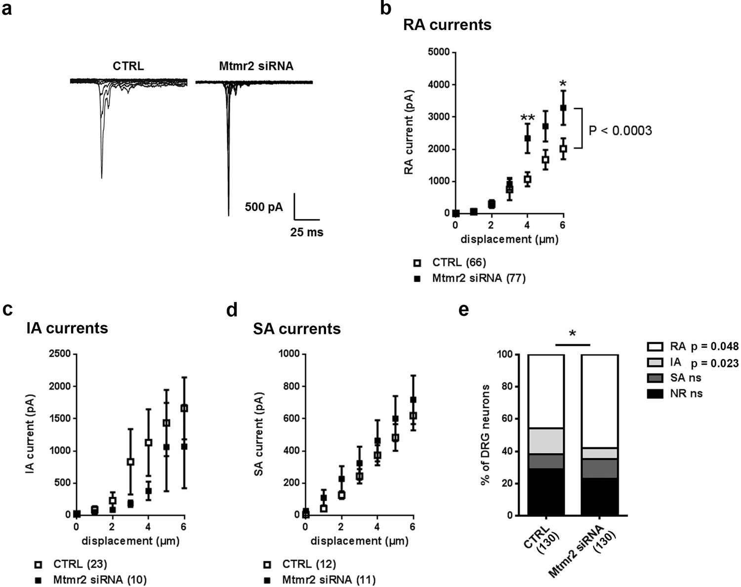 Myotubularin Related Protein 2 And Its Phospholipid Substrate Pip2 Cantilever Diagram Registration To Strength The Pdf Mtmr2 Knockdown Potentiates Piezo2 Activity In Peripheral Sensory Neurons