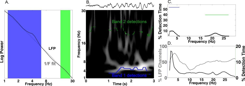 Phase-tuned neuronal firing encodes human contextual representations