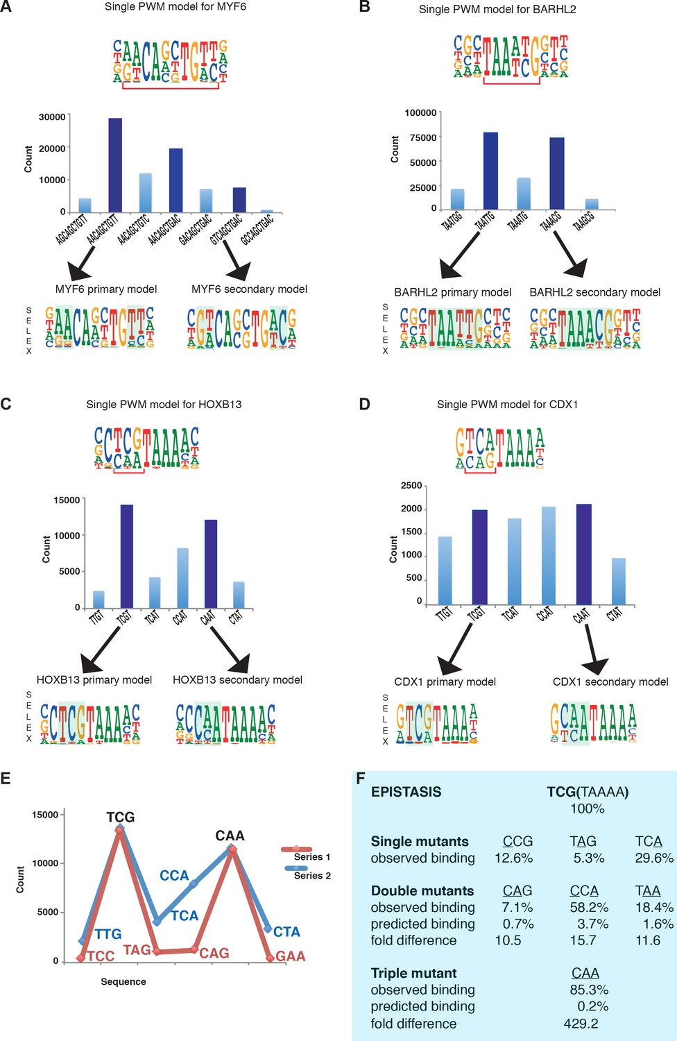 Two distinct DNA sequences recognized by transcription