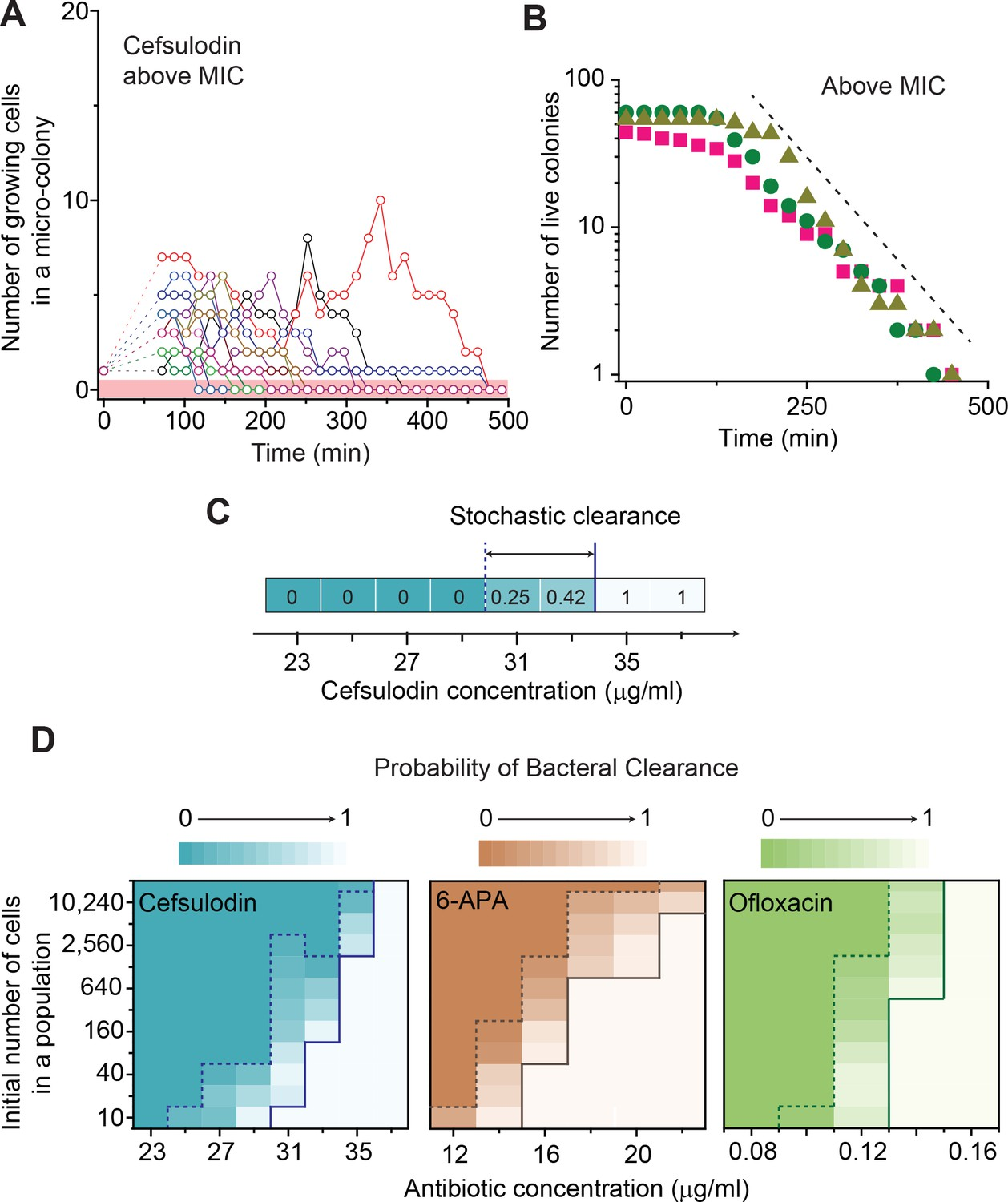 Antibiotic-induced population fluctuations and stochastic