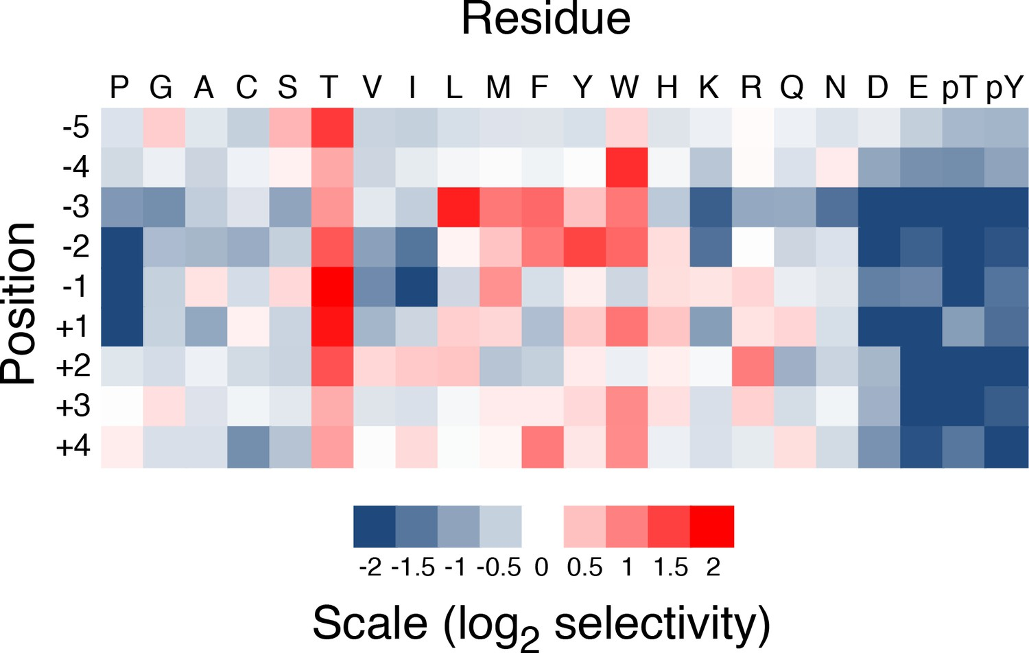 Identification Of Kinase Substrates Uncovers Interactions With Blue Band Cup 250 Gr Heat Map For Quantified Selective Values Phosphorylation