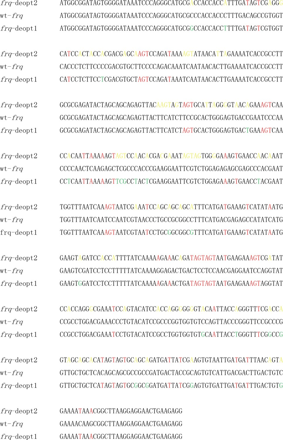 Codon usage biases co-evolve with transcription termination ...