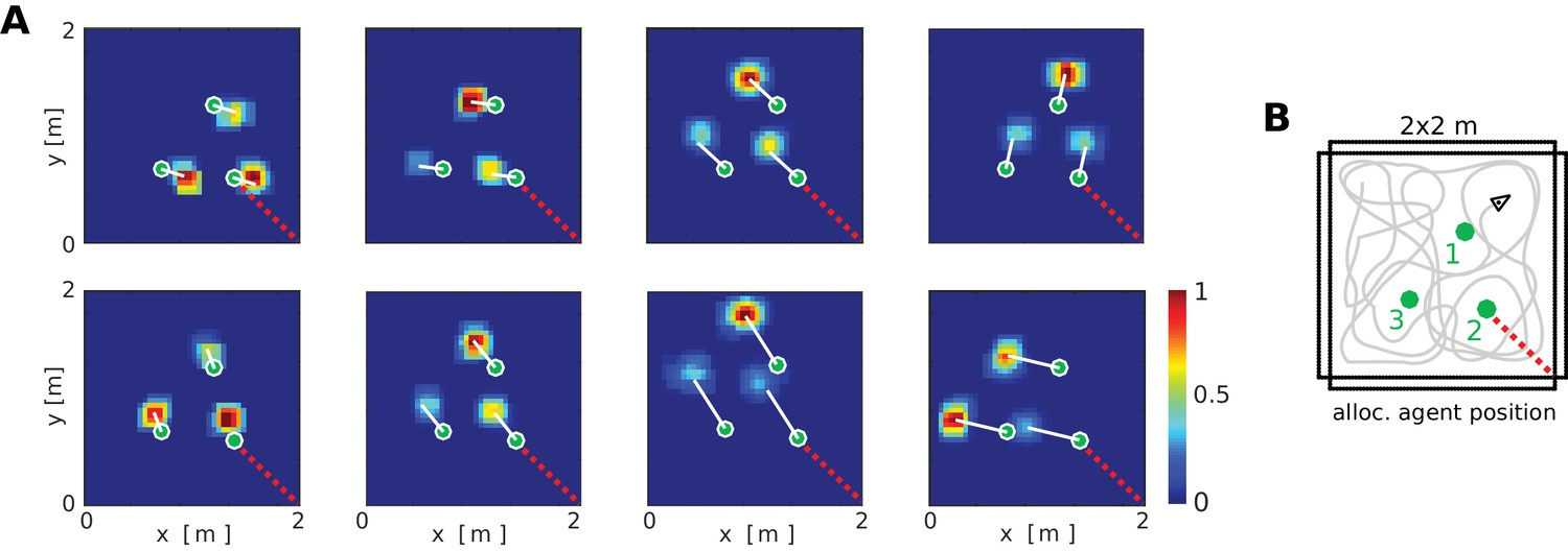 A Neural Level Model Of Spatial Memory And Imagery Elife Real Lifelike Representation The Circuit To Get Better Look Firing Fields Object Vector Cells