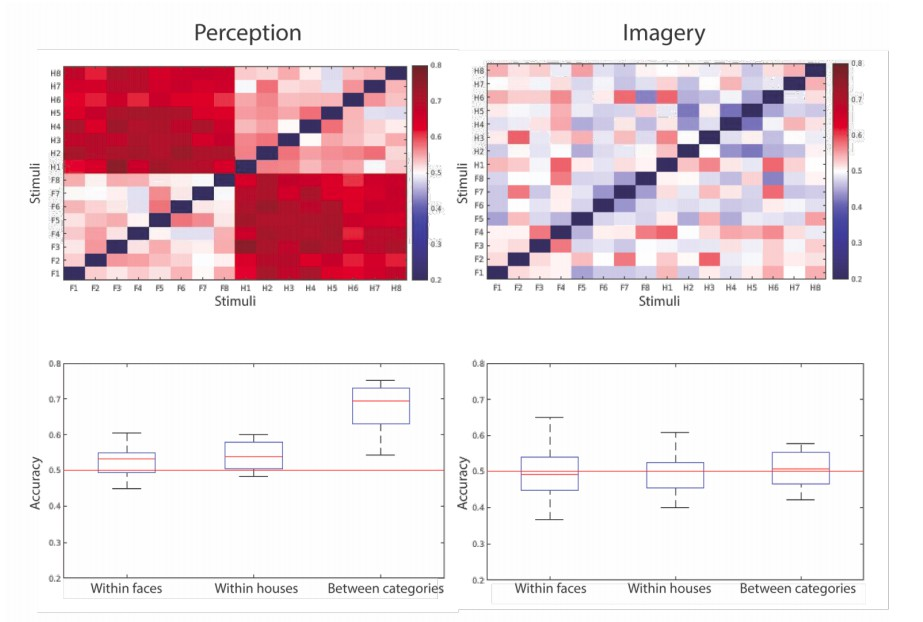 Differential temporal dynamics during visual imagery and