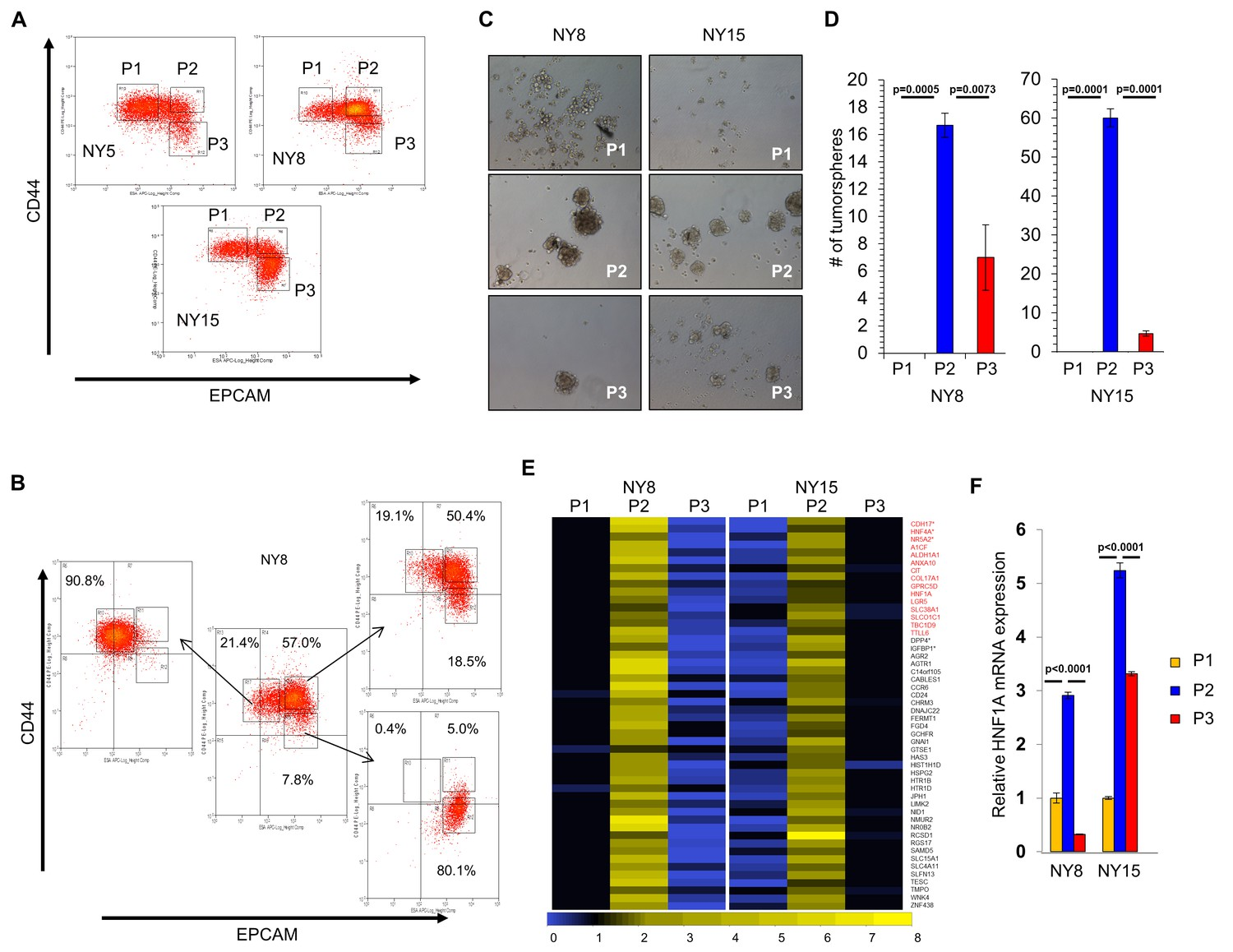 Hnf1a Is A Novel Oncogene That Regulates Human Pancreatic