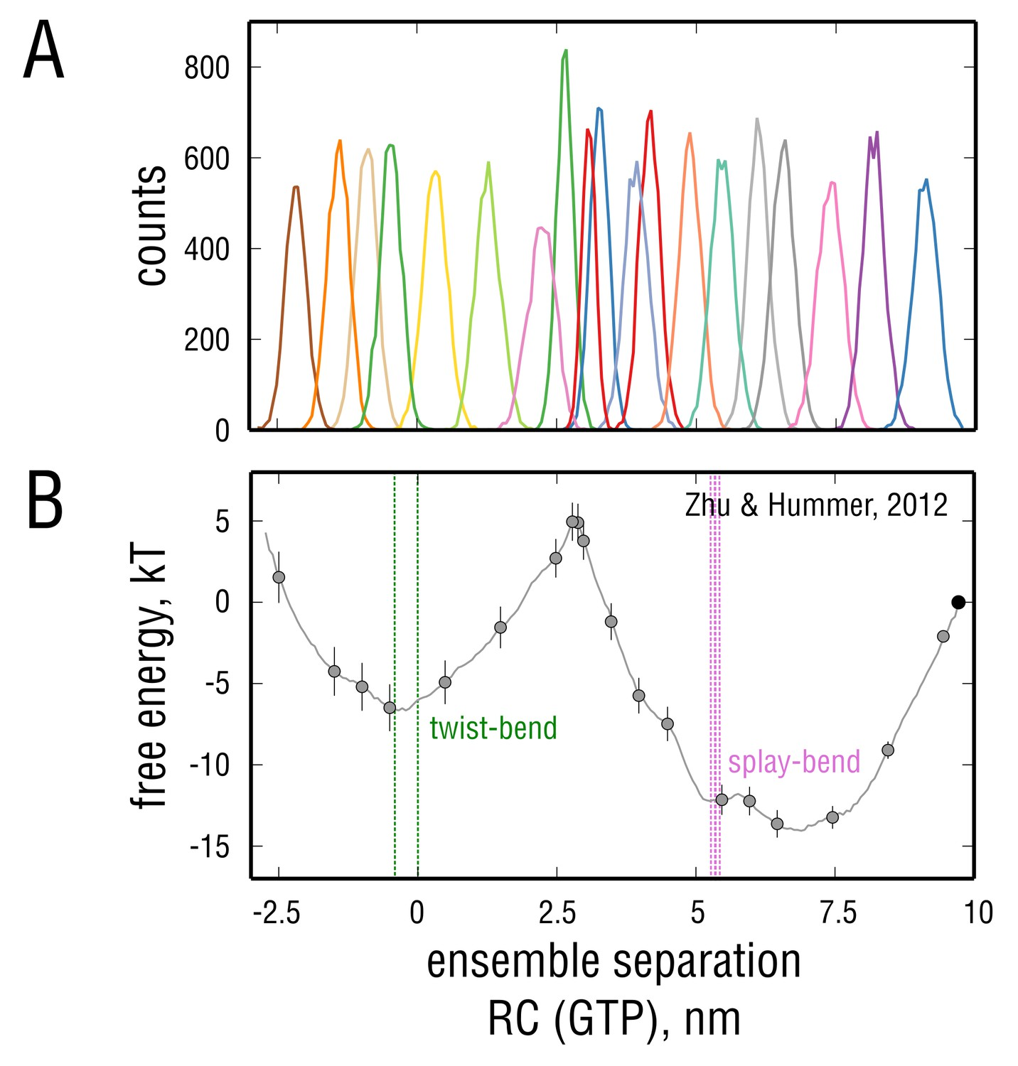Microtubule assembly governed by tubulin allosteric gain in