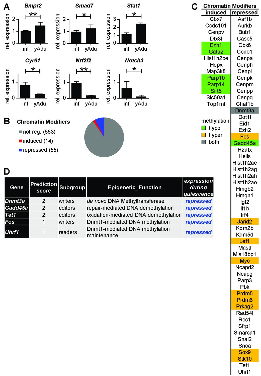 The transcriptomic and epigenetic map of vascular quiescence in the