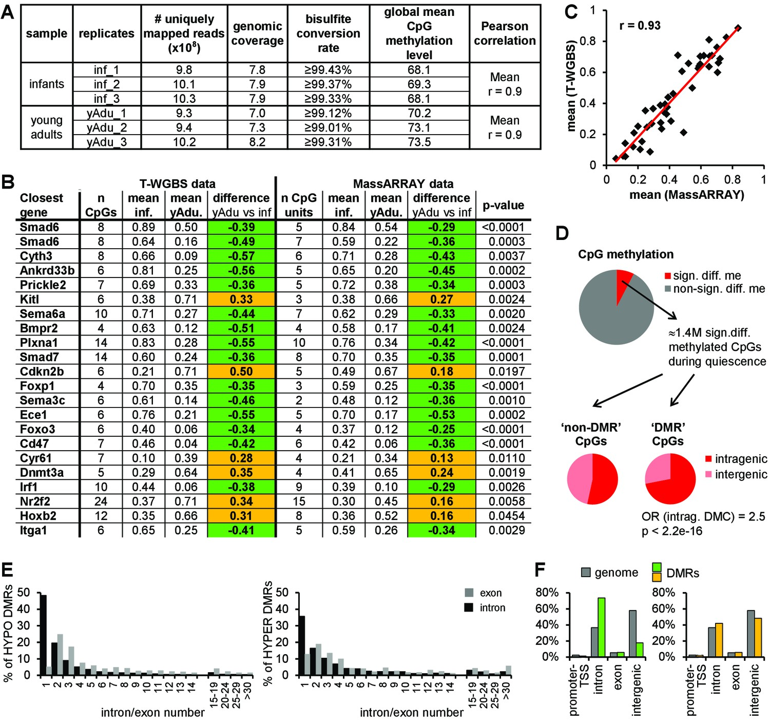 DNA Methylation Profiling Of Lung EC During Transition To Vascular Quiescence