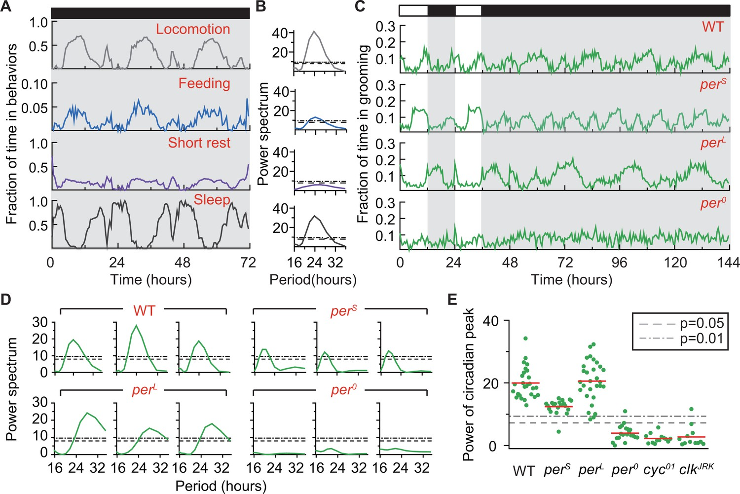 Automated analysis of long-term grooming behavior in