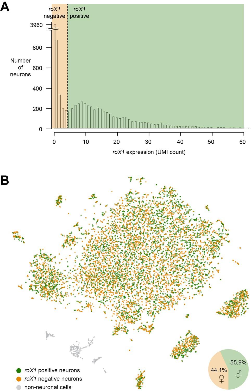 Cellular diversity in the Drosophila midbrain revealed by single