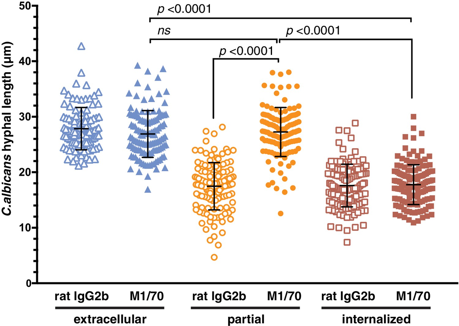 Integrin-based diffusion barrier separates membrane domains