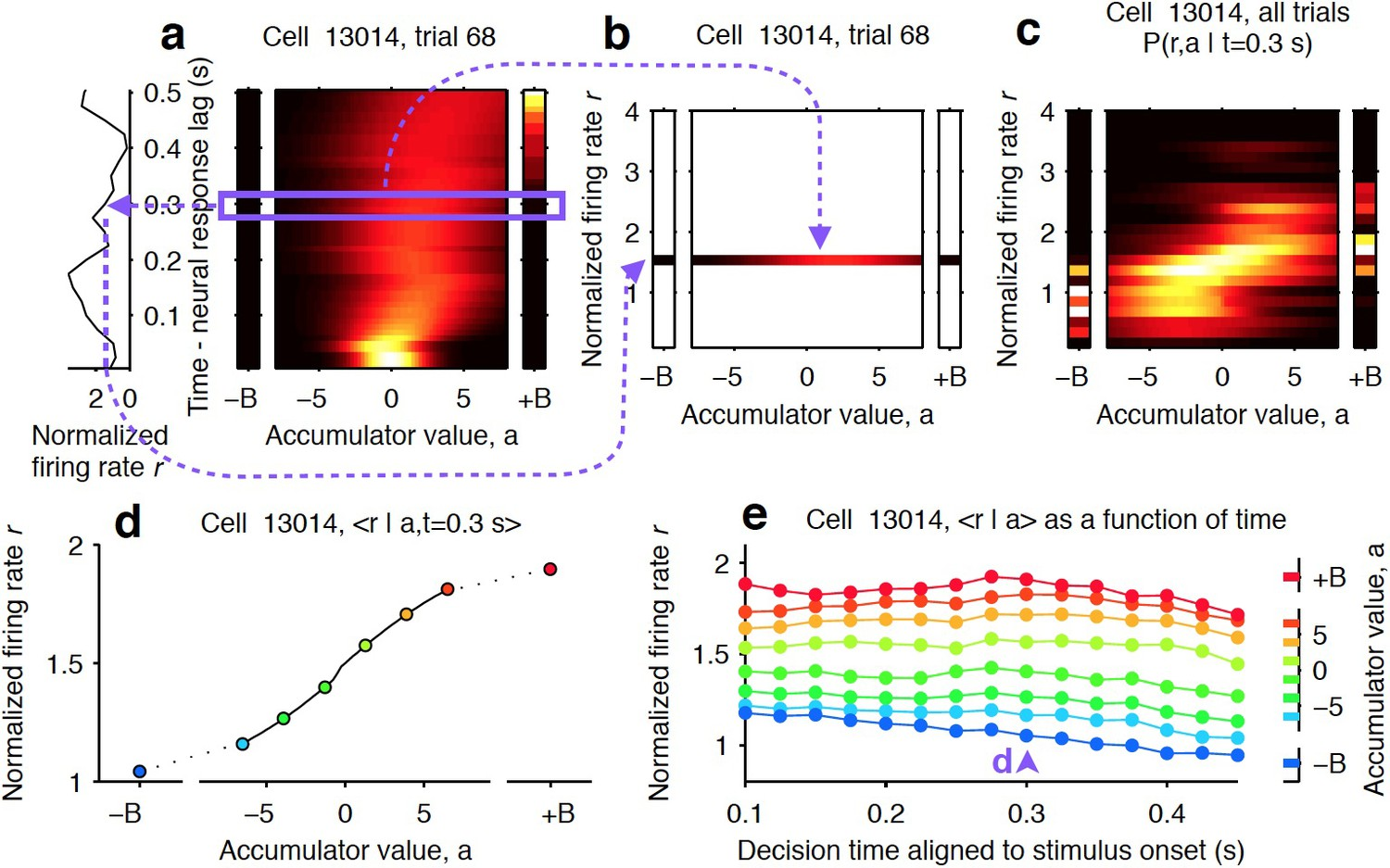 Causal contribution and dynamical encoding in the striatum during