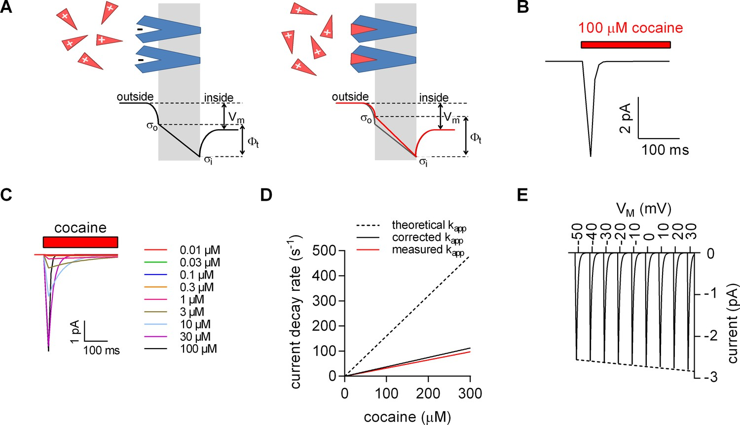 A Label Free Approach To Detect Ligand Binding Cell Surface Charge Sensitive Amplifier Circuit Model For Induced Elimination
