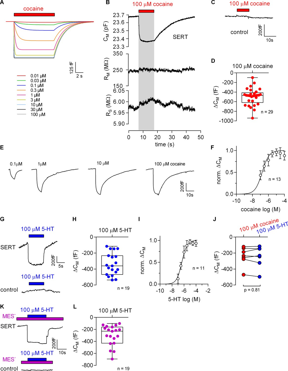 A label-free approach to detect ligand binding to cell surface