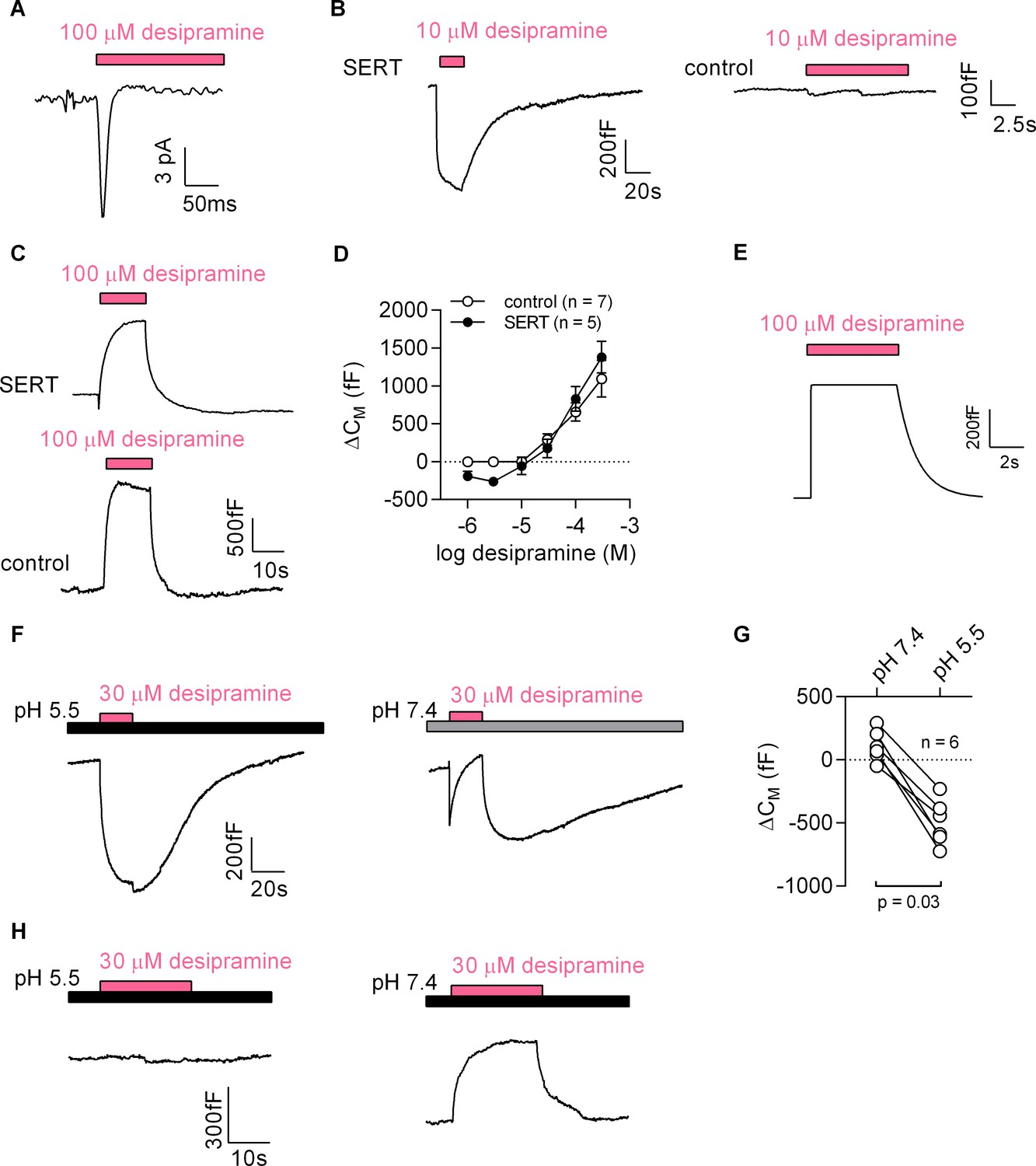 A Label Free Approach To Detect Ligand Binding Cell Surface Charge Sensitive Amplifier Circuit Desipramine Binds Sert At Low Concentrations And Changes The Density Inner Leaflet Of Membrane High