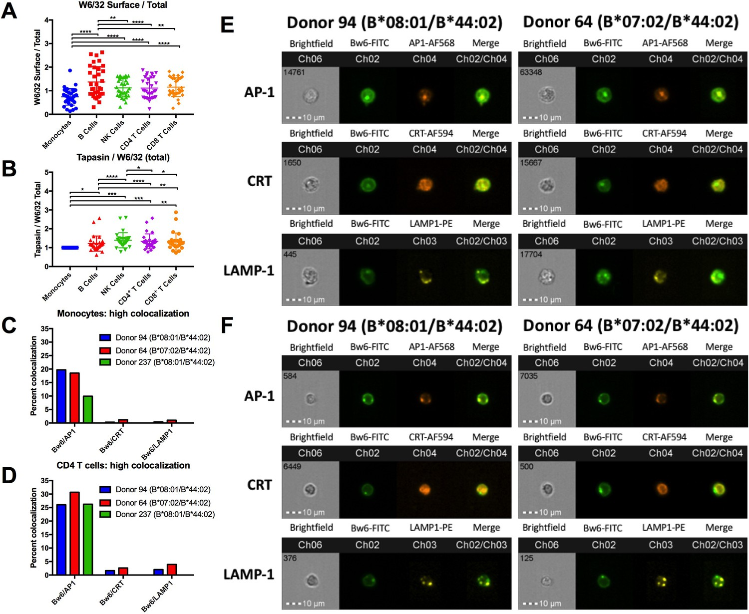Variations In Hla B Cell Surface Expression Half Life And Barton Python Mono Class I Assembly Differences Between Monocytes Lymphocytes