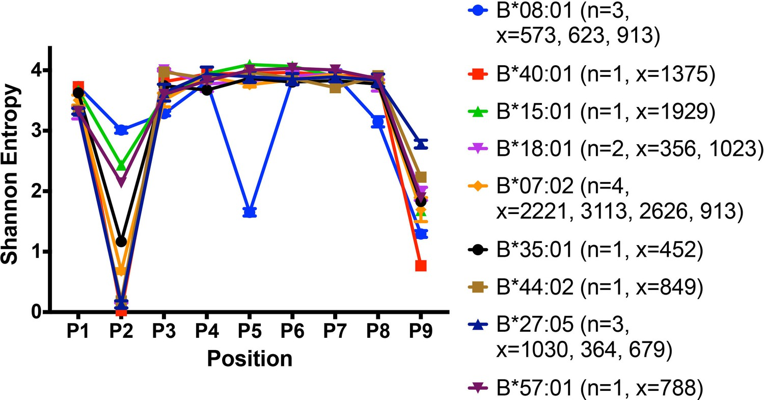 Variations In Hla B Cell Surface Expression Half Life And Barton Python Mono Peptidome Peptide Binding Characteristics Of