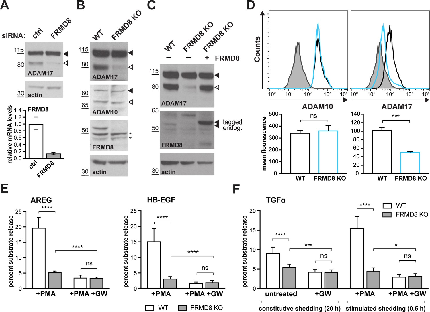 FRMD8 promotes inflammatory and growth factor signalling by