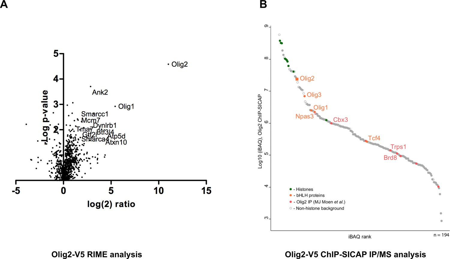 An Efficient And Scalable Pipeline For Epitope Tagging In Mammalian