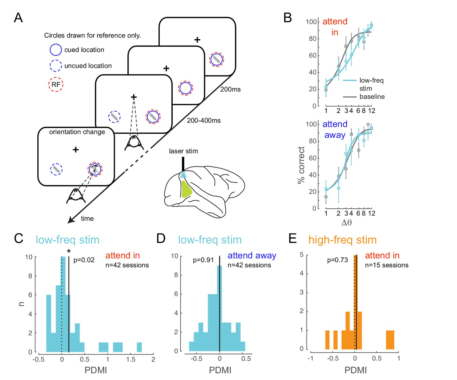 Optogenetically induced low-frequency correlations impair perception
