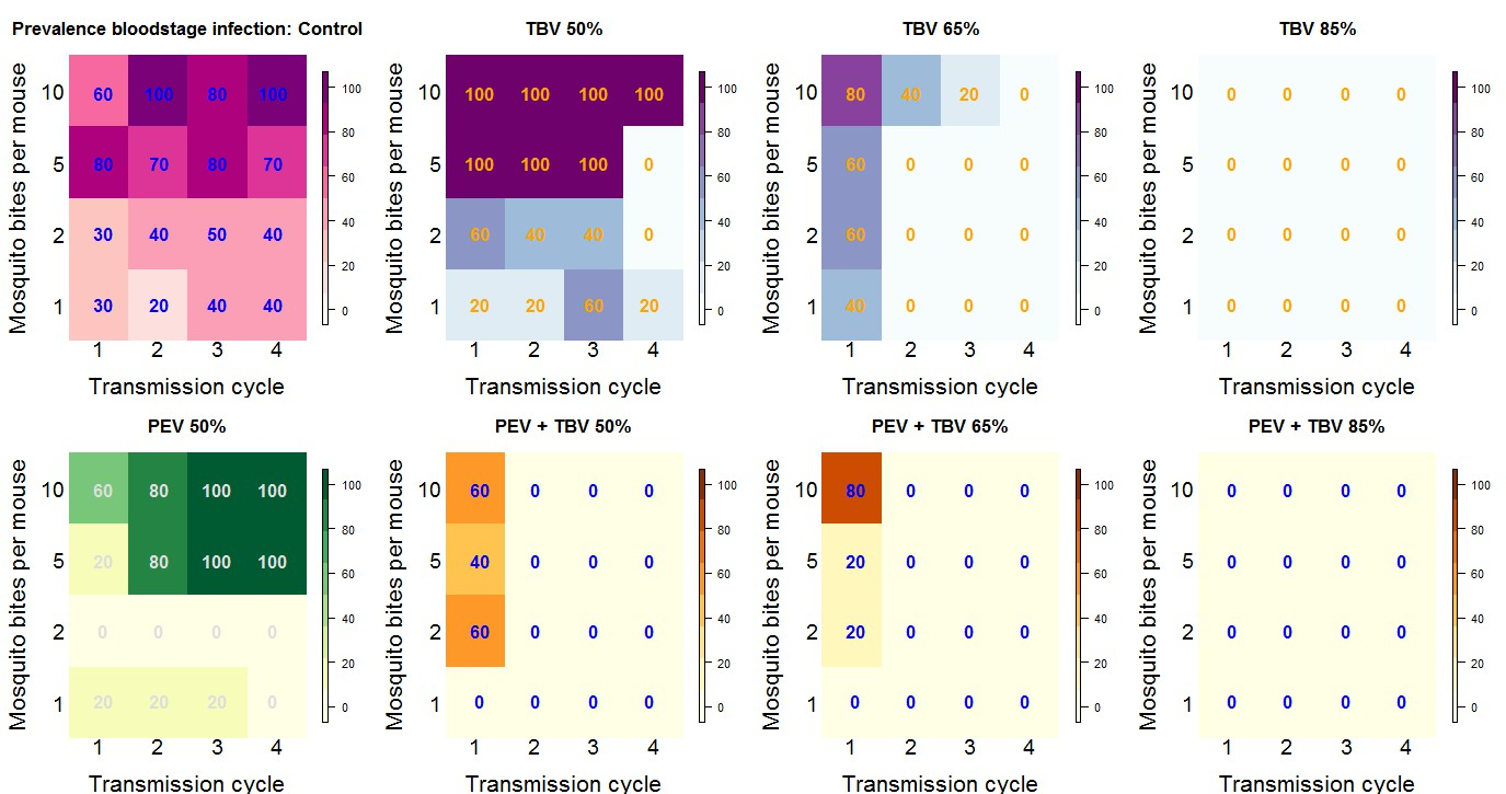 Synergy in anti-malarial pre-erythrocytic and transmission-blocking