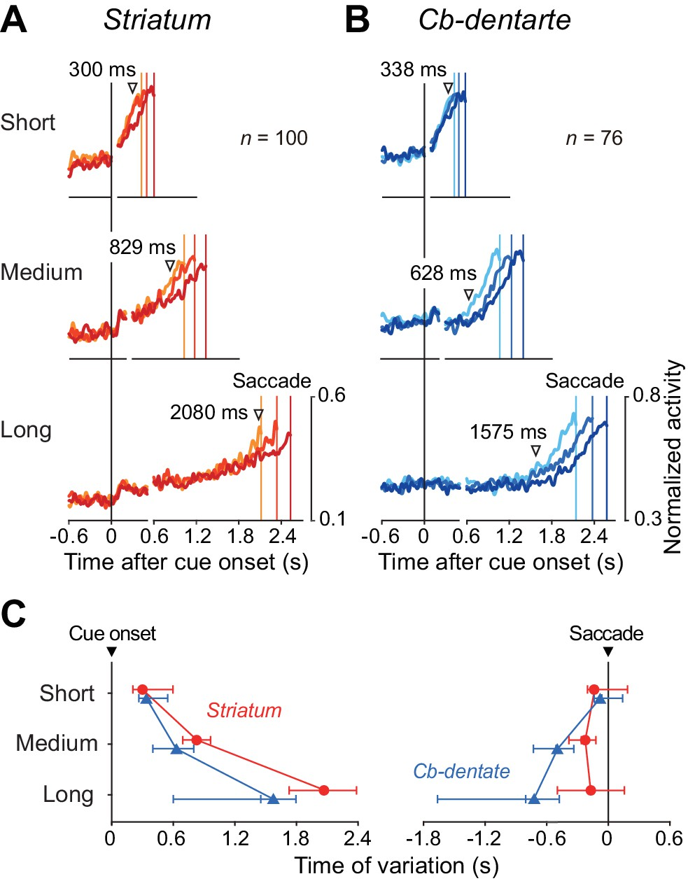 Different Contributions Of Preparatory Activity In The Basal Ganglia Time Delay Circuits Timing Trial By Variation Ramp Up