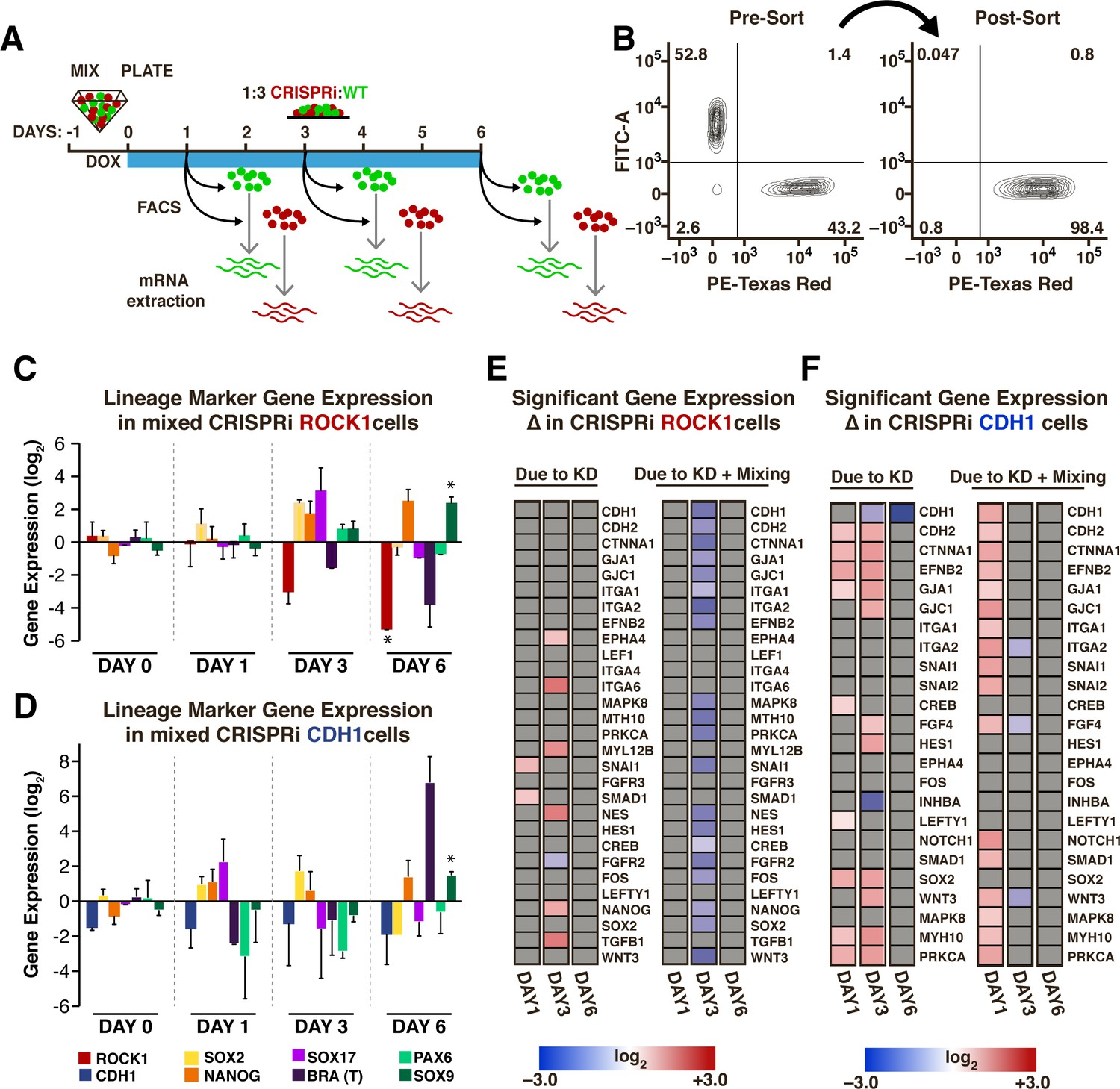 Spatiotemporal Mosaic Self Patterning Of Pluripotent Stem Cells Cantilever Diagram Registration To Strength The Pdf Transient Gene Expression Changes In Mixed Populations A Schematic