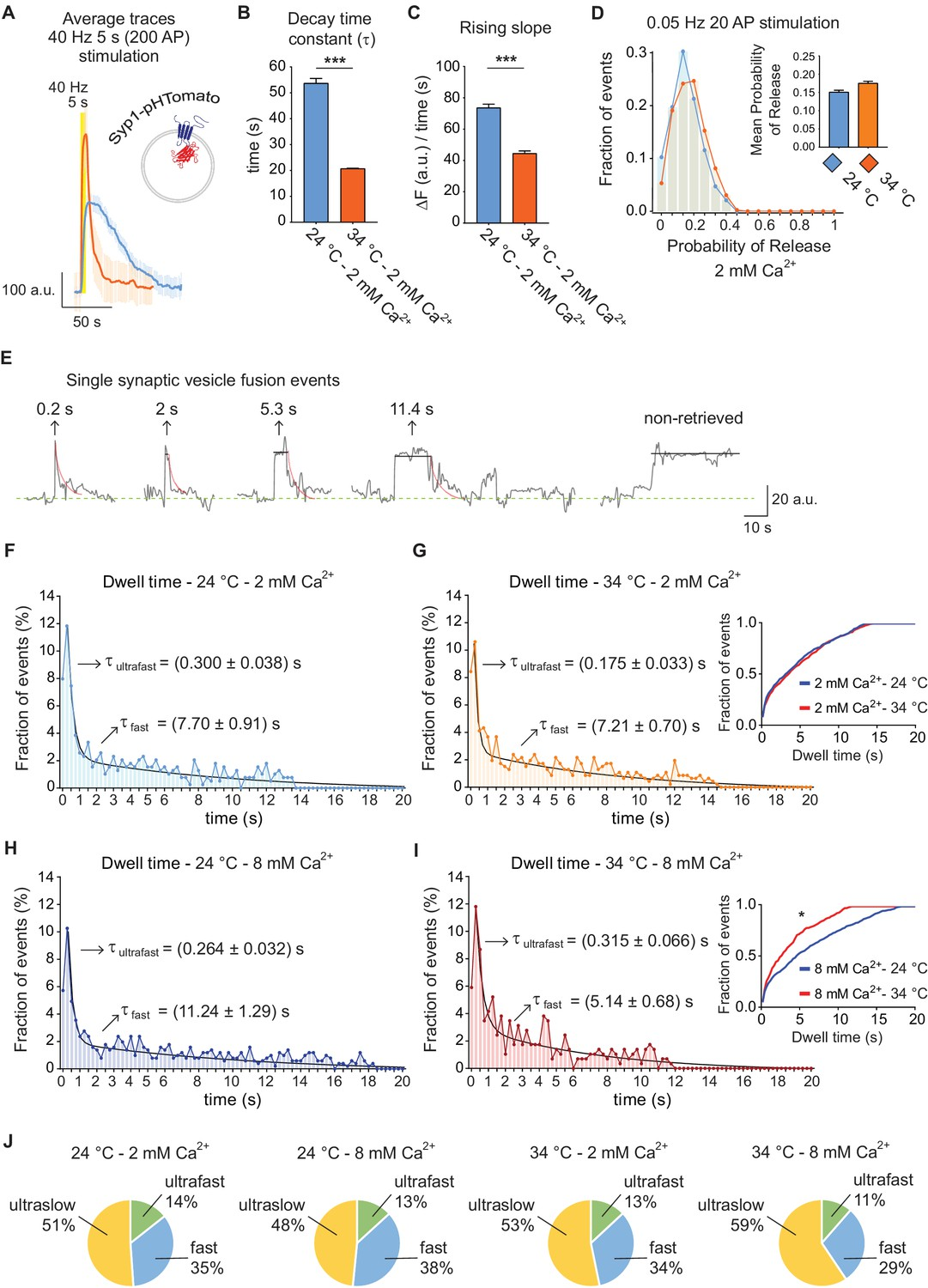 Optical Detection Of Three Modes Endocytosis At Hippocampal Uv Protection Yellow Fluor Trafficking Syp1 Phtomato Different Temperatures Reproduces Vglut1 Phluorin Behavior