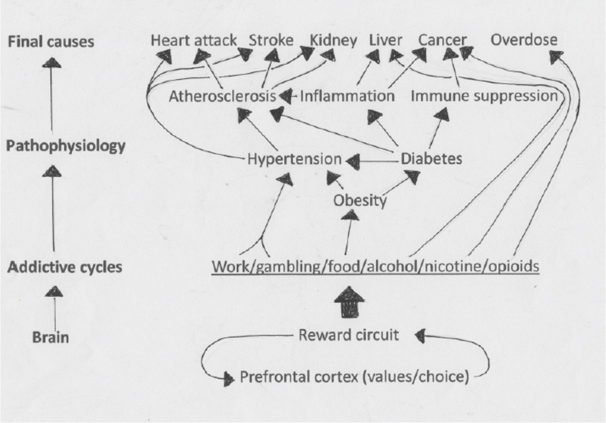 Point Of View Predictive Regulation And Human Design Elife Circuit Here Are Two More Circuits That Obviously Have Not Been Tried The Unbounded Consumption Rich Food Drives Metabolic Awry