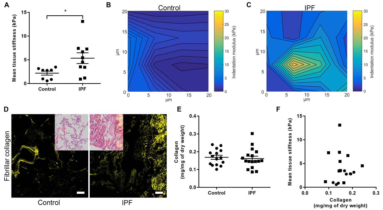Nanoscale dysregulation of collagen structure-function disrupts
