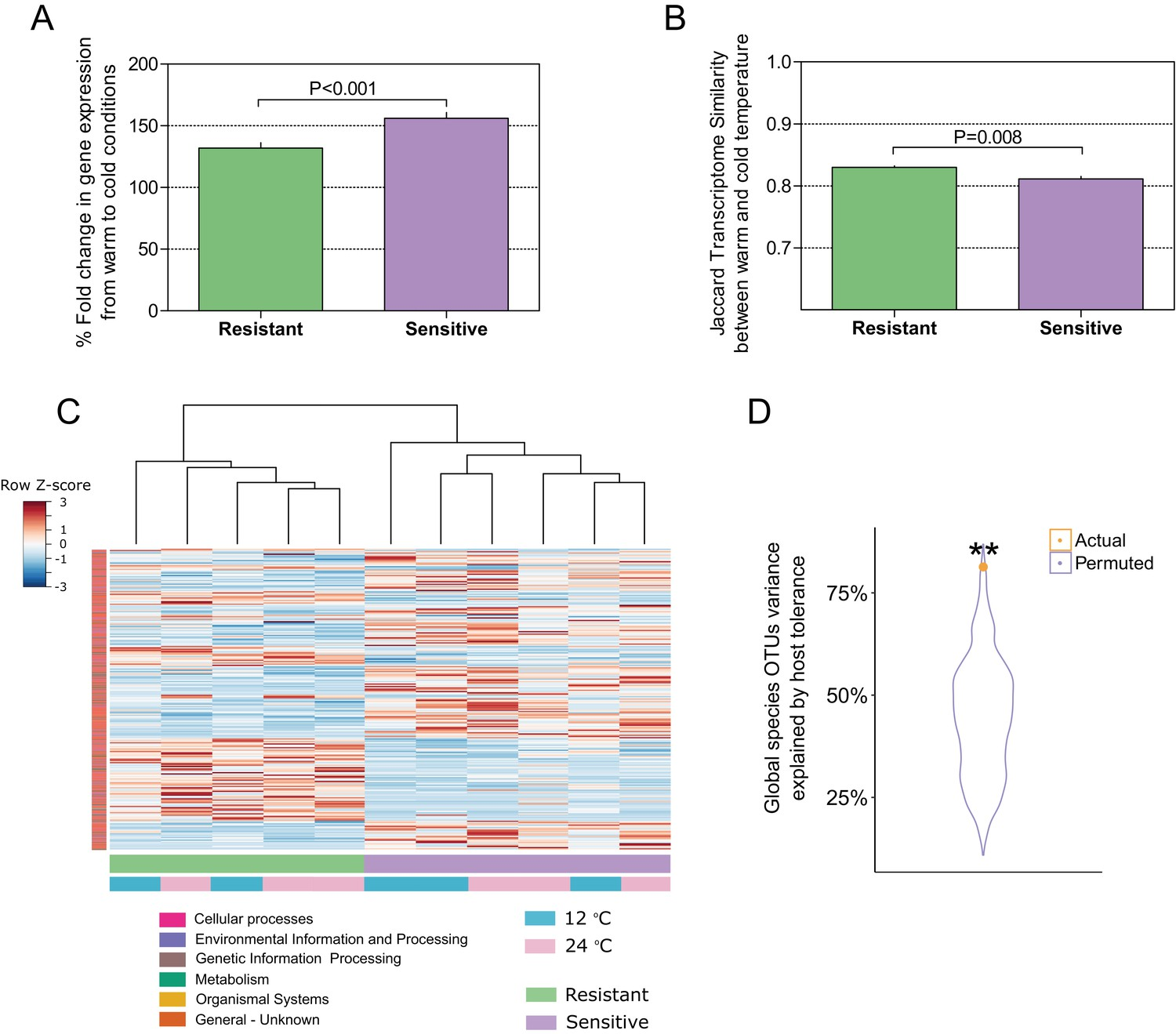Host genetic selection for cold tolerance shapes microbiome