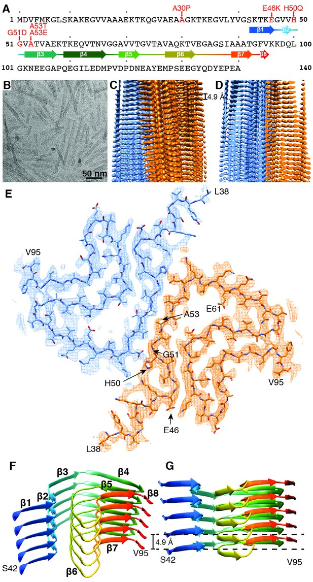 Figures And Data In Cryo Em Structure Of Alpha Synuclein