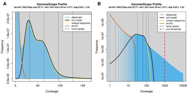 Firefly genomes illuminate parallel origins of