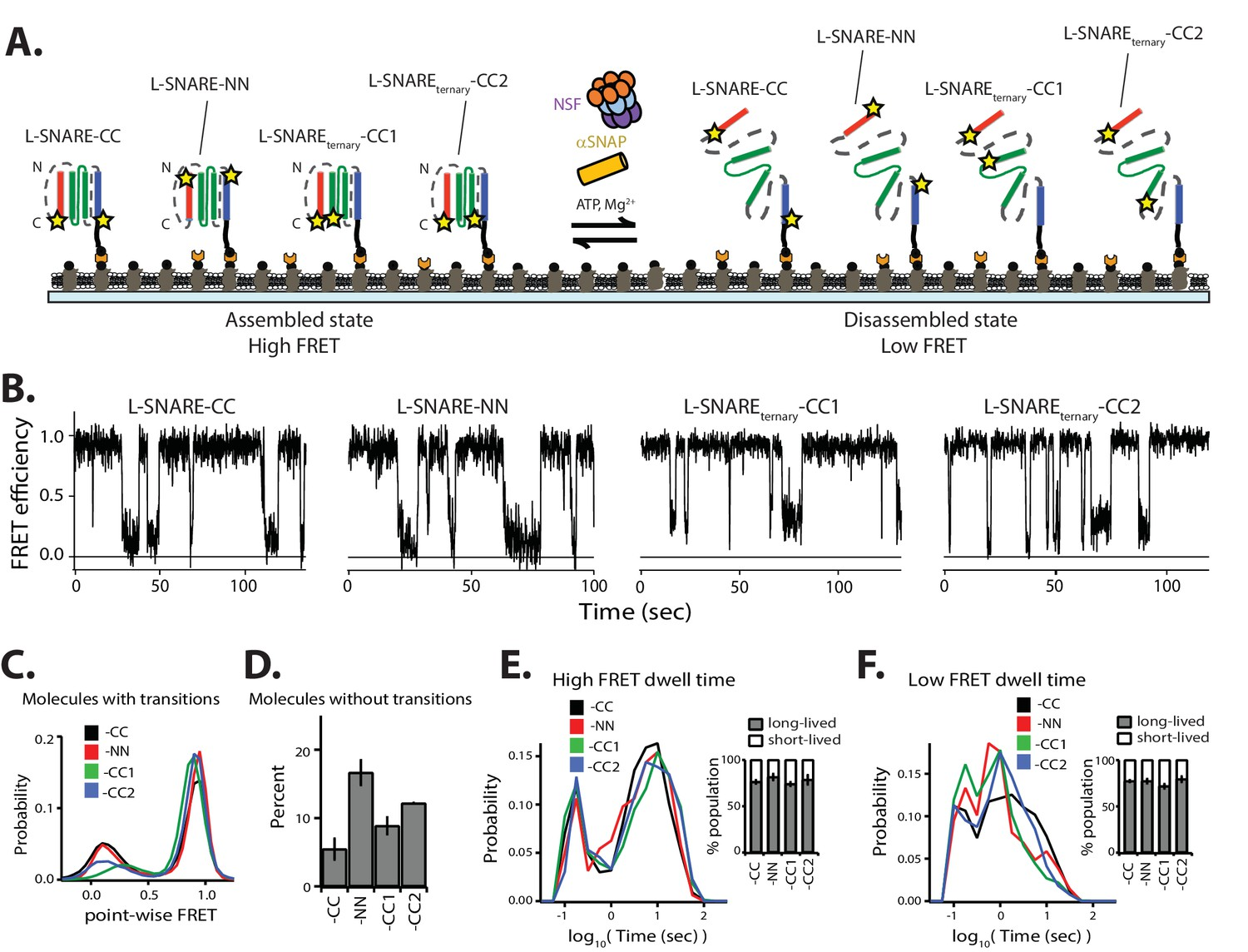 Nsf Mediated Disassembly Of On And Off Pathway Snare Complexes Labeled Animal Cell Diagram Related Keywords Suggestions Different Labeling Combinations Produce Similar Kinetics