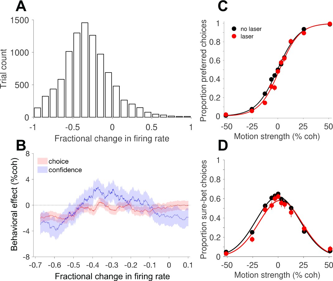 Focal optogenetic suppression in macaque area MT biases direction