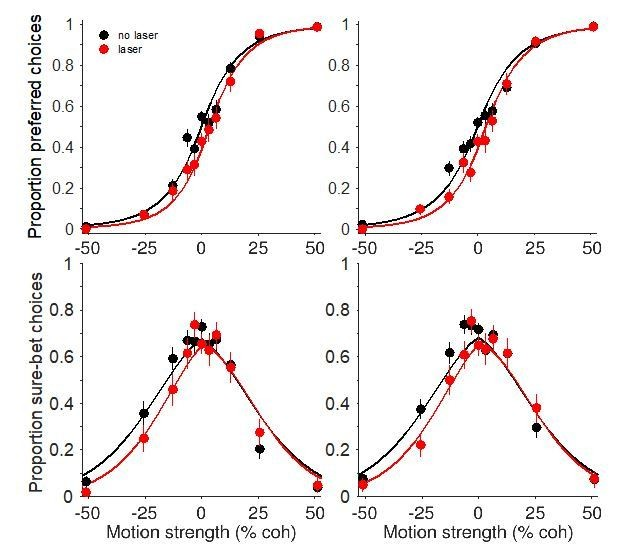 Figures and data in Focal optogenetic suppression in macaque