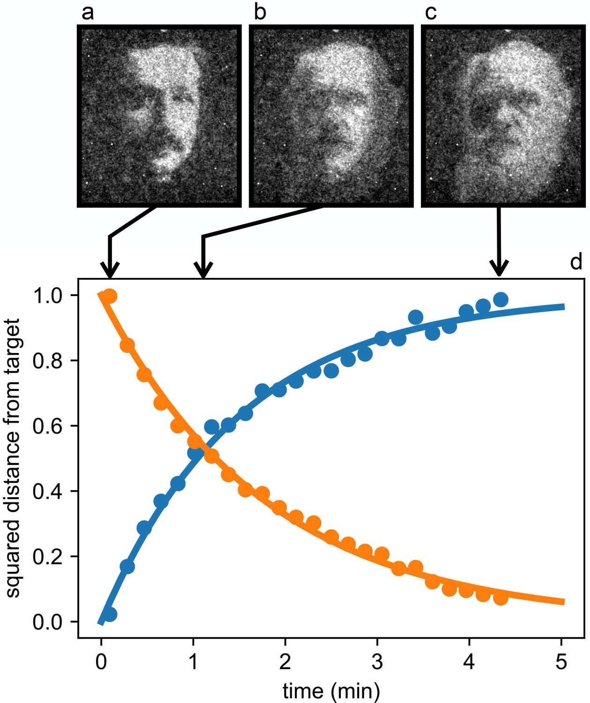 c3055d10d236 Dynamic density shaping of photokinetic E. coli