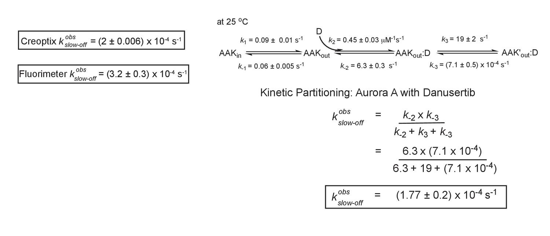 Dynamics of human protein kinase Aurora A linked to drug