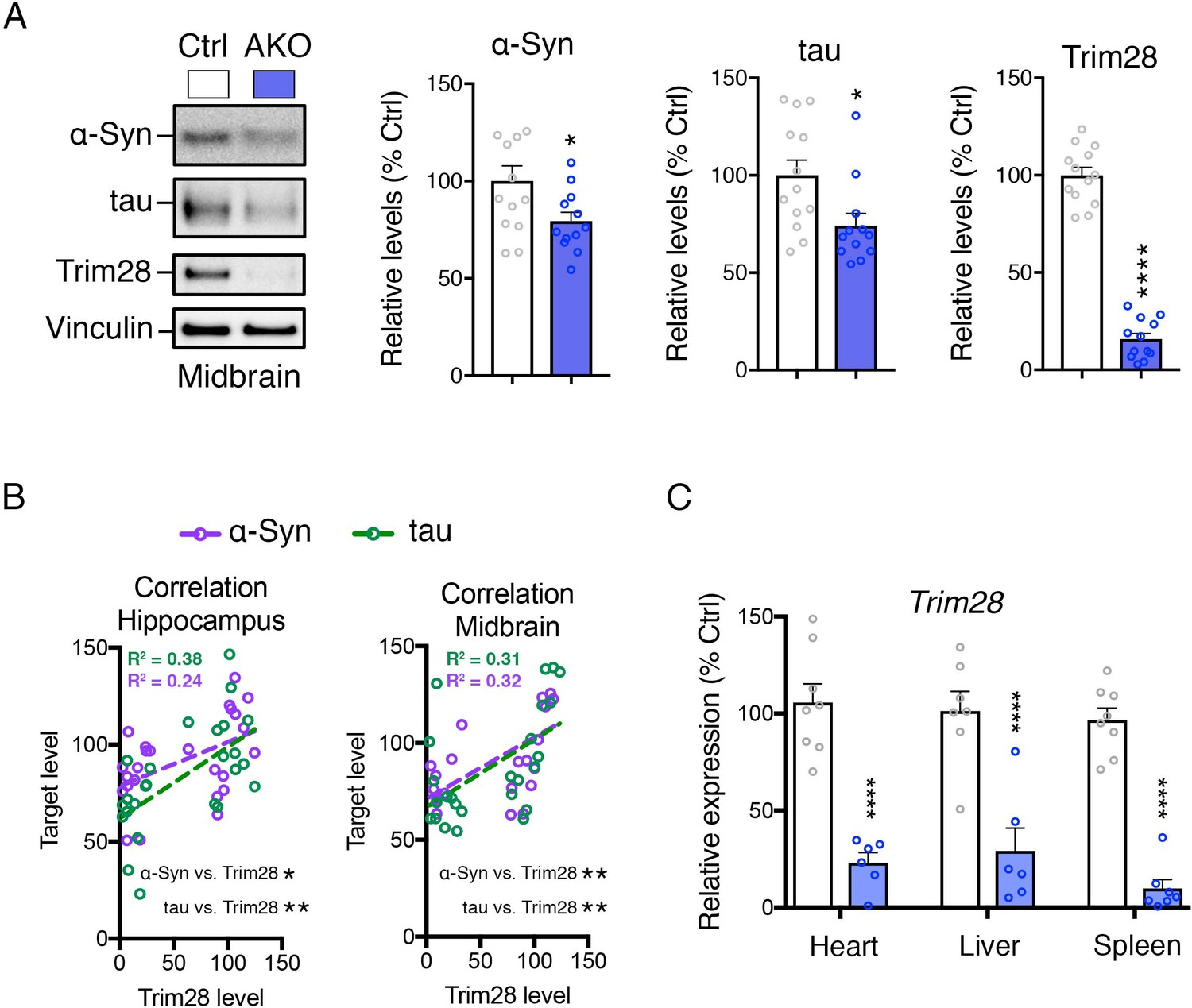 Depleting Trim28 In Adult Mice Is Well Tolerated And Reduces Levels Moonshine Diagram Related Keywords Suggestions Syn Tau Are Reduced Multiple Brain Regions From Knockout