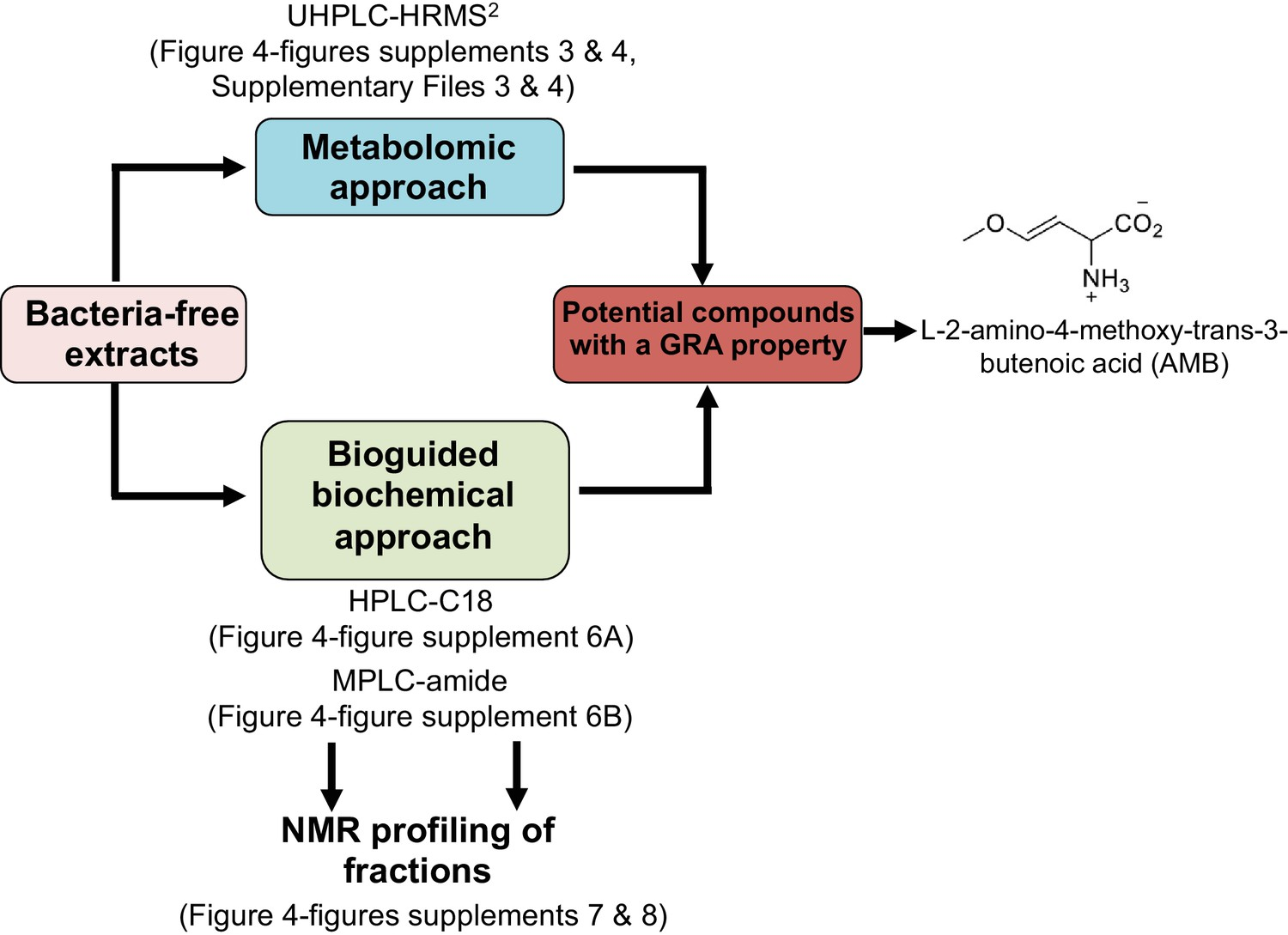 The Plant Pathogen Pseudomonas Aeruginosa Triggers A Della Dependent Germination Diagram It Works From Approaches Used In This Study To Identify Compounds Released By P With Repressive Activity Gra